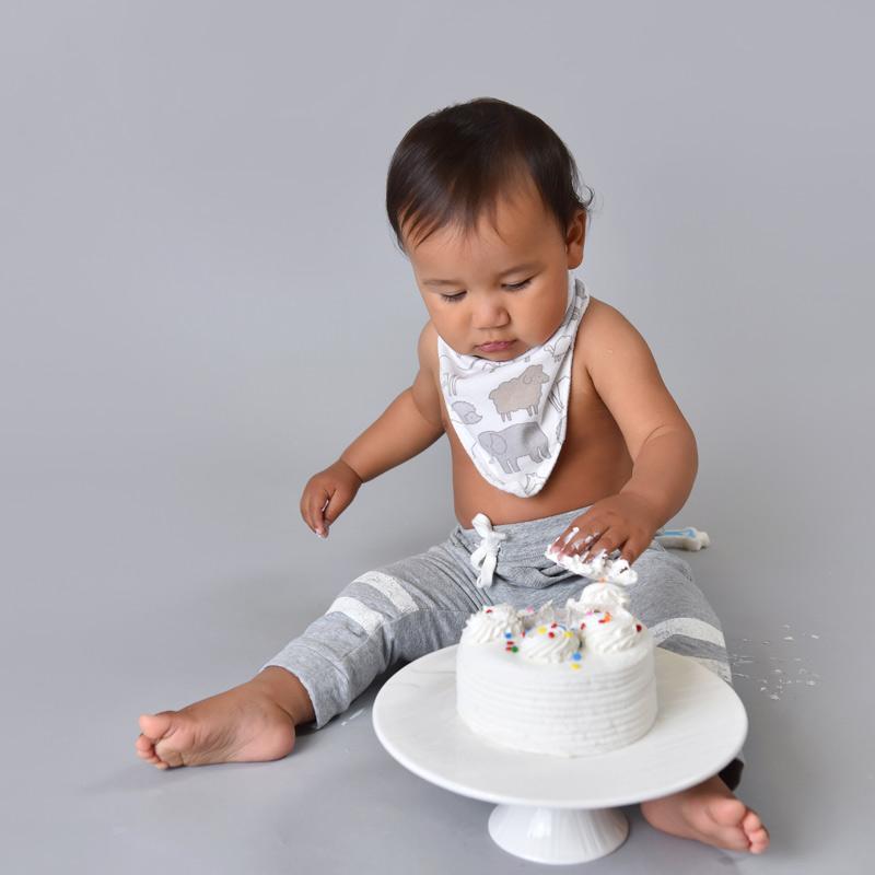 cake smash Milton
