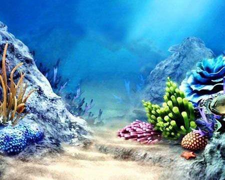 Underwater Backdrop
