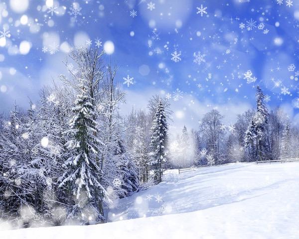 Snowy Arch Backdrop Rental
